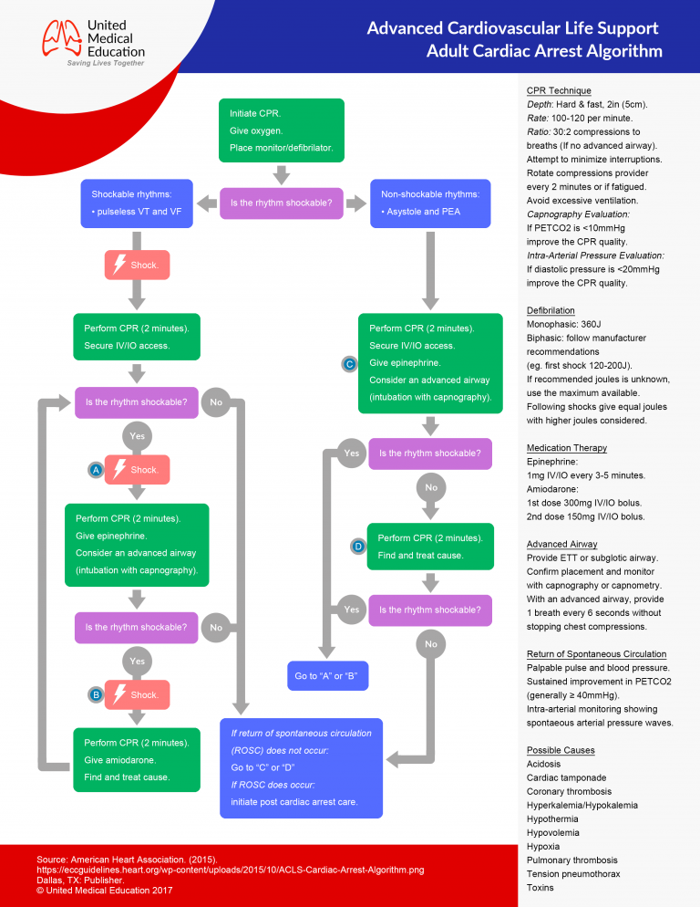 ACLS adult cardiac arrest algorithm copy
